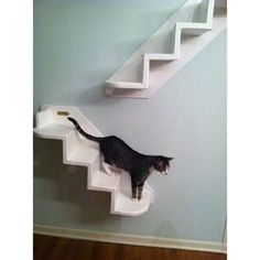 TheVerticalCat 4 Step Pet Stair Color: