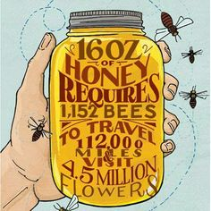 Honey Bee Die Off Cause By Multiple Factors Including Pesticides. More Here: http://billmoyers.com/2013/05/02/honey-bee-die-off-caused