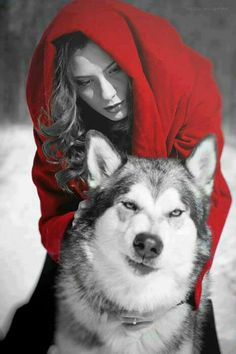 Red Riding Hood ~ And Her Wolf. (That's a husky not a wolf. Husky, Wolves And Women, Red Ridding Hood, Red Riding Hood Wolf, Wolf Love, Wolf Spirit, Big Bad Wolf, Fantasy Photography, Red Hood