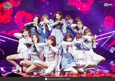 Photo album containing 82 pictures of IZ*ONE Sakura Miyawaki, Japanese Girl Group, Kim Min, The Wiz, Kpop Groups, Pop Fashion, Yuri, Rapper, Stage