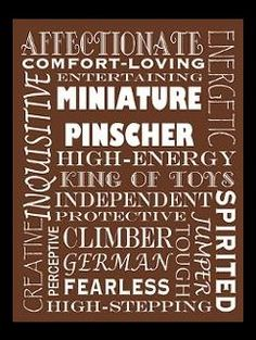 This tells it all! Min pin description