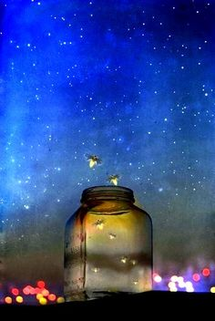 firefly magic catch a falling star make a wish!!! let the magic fly!!!