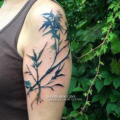 I *loved* doing these brushstroke bamboo plants on Larisa for her first tattoo!  #watercolortattoo #davidboggins #columbusohio  #americancrowtattoo