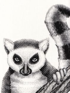 Blackwork Lemur by RSN Tokyo Certificate Student Kaoru Sato