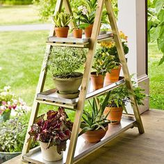 Factory Second A-Frame Plant Stand
