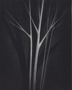Trees and stars. 2013