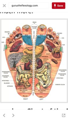 Shiatsu Massage – A Worldwide Popular Acupressure Treatment - Acupuncture Hut Health And Beauty, Health And Wellness, Health Tips, Health Fitness, Reflexology Massage, Foot Massage, Foot Reflexology Chart, Massage Body, Neck Massage