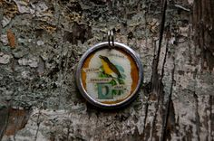 Protect Yellow breasted Chat collage charm by diddywadiddy on Etsy, $14.00
