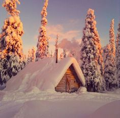 m-o-o-n-w-h-i-s-p-e-r: i really think a honeymoon in a cozy little place like this would be perfect.. because who wants to leave the room a...