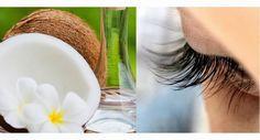 Descubre cómo preparar un tratamiento natural de aceite de coco para engrosar tus pestañas y lucir una mirada más atractiva. ¡Apunta!