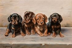 Bad weather, but we have something against it! Our enchanting dachshund puppies from Carl Reichert conjure up a smile on everyone's face and bring playful lightness into your apartment. Dachshund Art, Dachshund Puppies, Dachshunds, Animal Painter, Animal Paintings, Retro Images, Magazine Art, Art Market, Modern Art