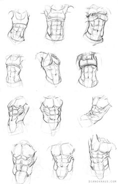 Basic Male Torso Tutorial By Timflanagan On Deviantart Step 1