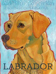 "Labrador Retriever No. 3 - Yellow Lab Art Print 8.5x11"""