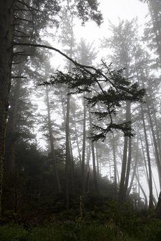 e3112eed3174e2a9-Oregon_0285.jpg