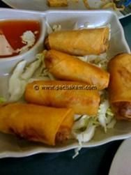 Spring rolls made with vegetable stuffing