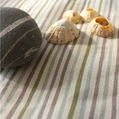 Smart Stripe Fabric Collection by Sarah Hardaker is ideal for upholstery and when creating beautifully finished spaces in your spaces Roman Blinds, Striped Fabrics, Seashells, Vintage Patterns, Oakley, Wallpapers, Curtains, Spaces, Collection