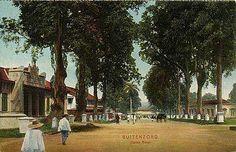 Buitenzorgh