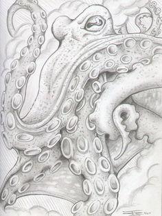 Octopus Drawing - Octopus Fine Art Print - John Shook