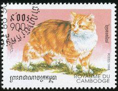 "Cambodia 1998 Cat Stamps - ""Cymric"""