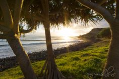 Lennox Head at sunrise by Craig Parry Photography