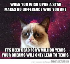 Grumpy Cat space star...
