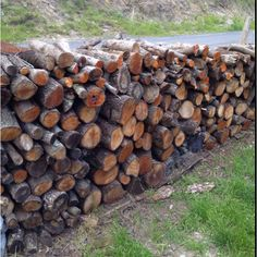 Woodpile, Perpignan, France. Neighbours to Maison Blanche.
