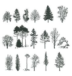 Tree silhouette collection vector 375478 - by nezabarom on VectorStock®