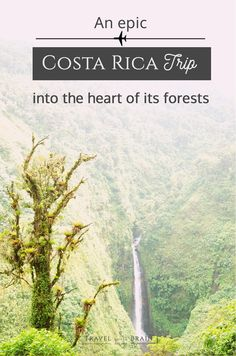 An Epic Costa Rica Trip into the Heart of its Forests #sponsored