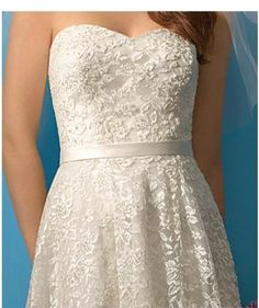 A Line Princess Strapless knee length Lace wedding dress (WS0027