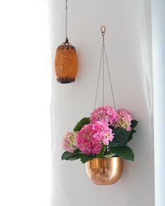 The Nina Edition (@theninaedition) • urban gardening - hängende Blumendeko in Kupfer, Hortensien