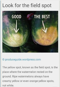 food facts did you know ; Simple Life Hacks, Useful Life Hacks, Food Facts, Baking Tips, No Cook Meals, Good To Know, Love Food, Just In Case, Helpful Hints