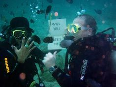 The 10 best places to get married in the Great Barrier Reef Places To Get Married, Got Married, Getting Married, Wedding Proposals, Great Barrier Reef, Destination Wedding, Around The Worlds, Adventure, Summer