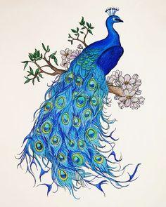 Znalezione obrazy dla zapytania peacock art