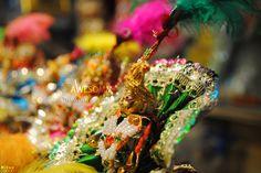 bal gopal krishn