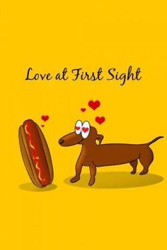 LOL!!! #dachshund #doxie #hotdog