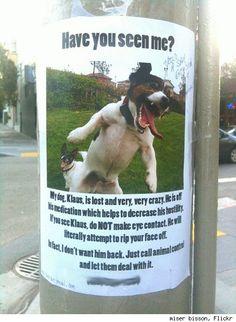 Please Spread The Word Chloe Was Last Seen In Fleetwood