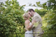 bride and groom on wedding day at a vineyard / winery