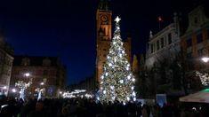 Gdańsk, Gdynia, Sopot- noclegi, aktualne wydarzenia, imprezy, spektakle. Firmy, kino, wydarzenia, przewodnik, mapa, kwatery,hotele, noclegi Christmas Tree, Holiday Decor, Cinema, Teal Christmas Tree, Xmas Trees, Christmas Trees, Xmas Tree