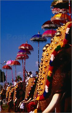 Costumed elephants with riders holding umbrellas for Elephant Festival in Ernakulam. Pictures: Posters by Eddie Gerald at Posterlounge.co.uk