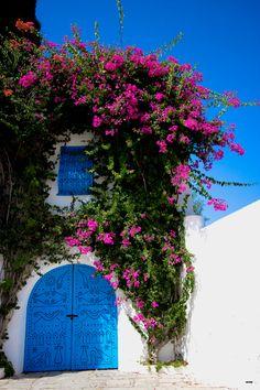 House in Tunis, Tunisia