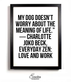 "My dog doesn't worry about the meaning of life."" ― Charlotte Joko Beck, Everyday Zen: Love and Work -"