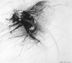 April Coppini drawings