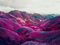 magenta + fuchsia + navy + teal + gray (photo by Richard Mosse)