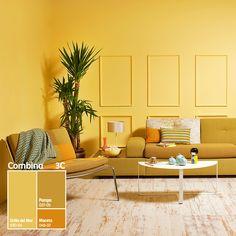 Ilumina y dale un toque de alegría a tus espacios con nuestro Sistema Combina 3C, ¡experimenta con color!