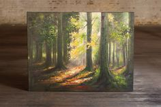 Morning sunshine in the woods $329.00 At West End