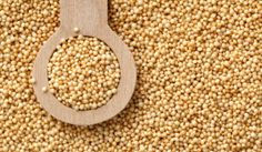o-cha-de-amaranto-beneficios-e-propriedades