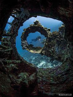 carnatic shipwreck red sea underwater scuba diver                                                                                                                                                      More