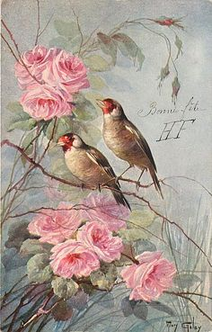 two birds face slight left, pink flowers