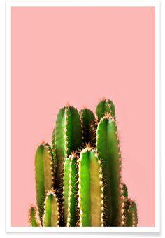 Cactus Time als Premium Poster door cafelab | JUNIQE