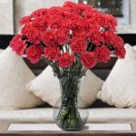 Carnations 150 Stems from Cotsco $79.99 ($0.53 per stem) #centerpieceflowers
